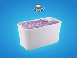 Campina - Blueberry 5L